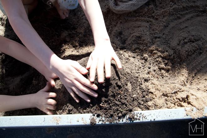 hiekkakakut