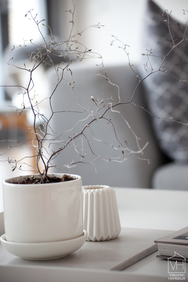 kummituspuu