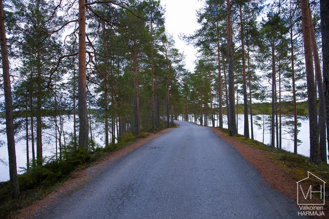 tie_piilopaikkaan
