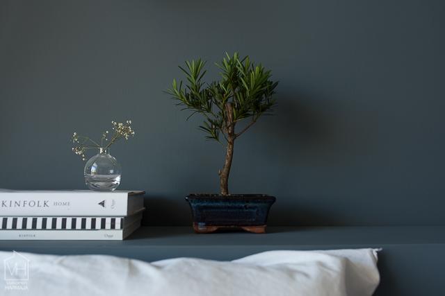 bonsaipuu-0426