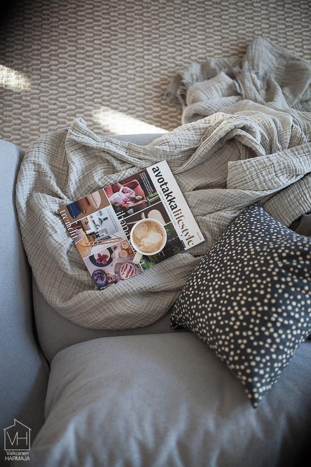 avotakka_lifestyle-4202
