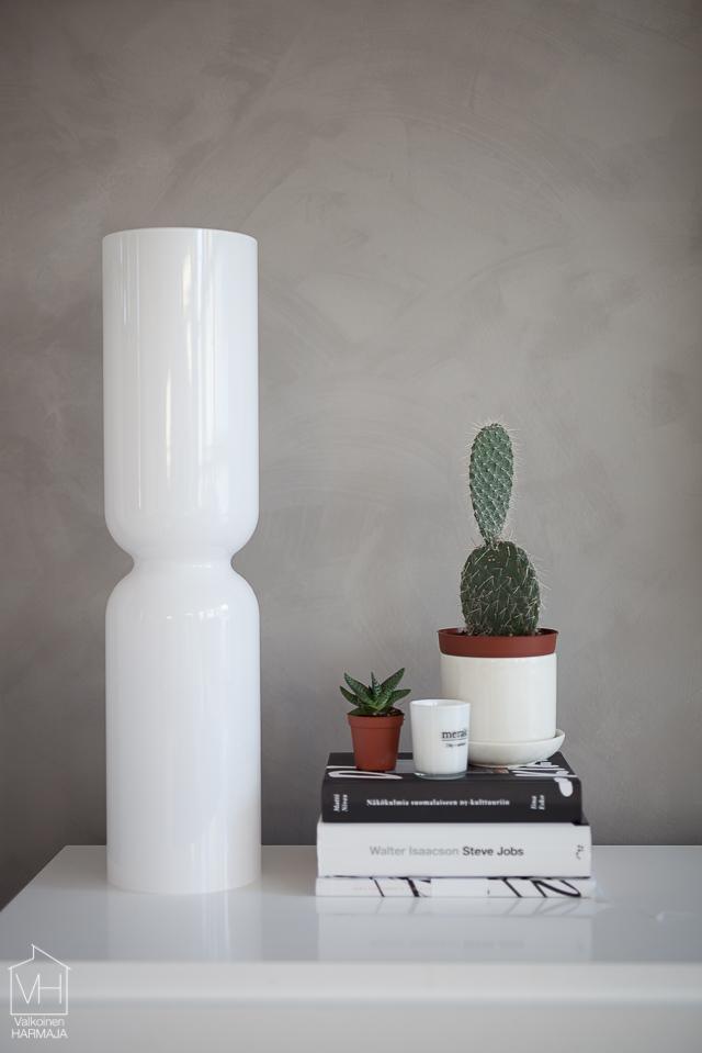 kaktus-3018