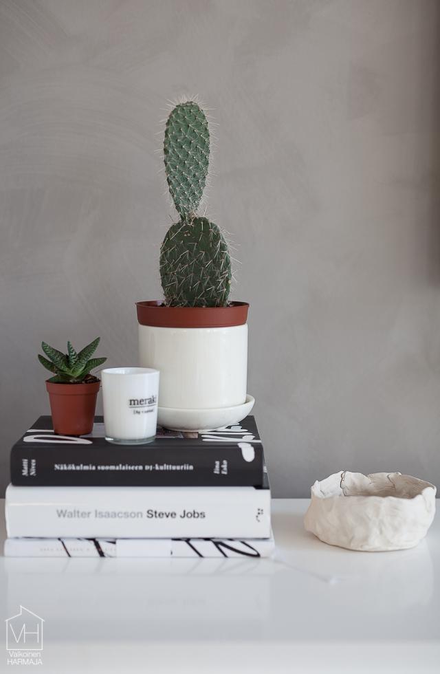kaktus-3025