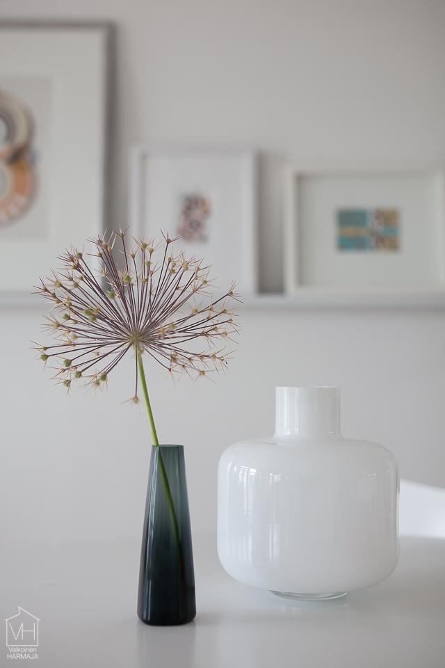 flower-5700